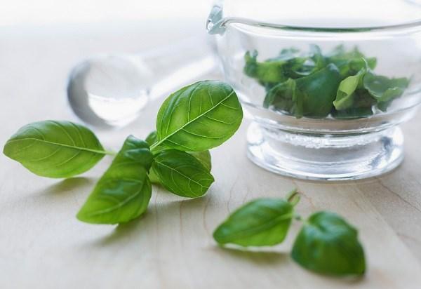 Bài thuốc trị nấm âm đạo bằng cách xông và rửa với lá trầu không