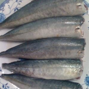 Cá nục kho riềng