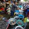 Mẹo nhỏ giúp chọn mua đúng thủy sản bắt ở đồng khi đi chợ