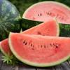 Dưa hấu: Trái cây mùa hè tốt cho bà bầu