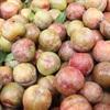 Khám phá 7 đặc sản trái cây vùng Tây Bắc