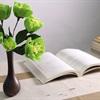 Hô biến giấy màu thành cành hoa đẹp y như thật