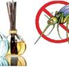 Xua đuổi muỗi bằng những biện pháp tự nhiên