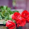 Ý nghĩa các món quà tặng người ấy vào ngày lễ Tình nhân 14 tháng 2