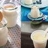 Cách Làm Sữa Chua Ngon Ngất Ngây Vị Phô Mai Hấp Dẫn