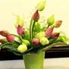 Mẹo hay giúp hoa đang héo trở nên tươi rói