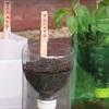 Mẹo làm bình tự cung cấp nước cho cây không tốn một giây