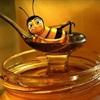 Lưu ý 5 sai lầm khi sử dụng mật ong