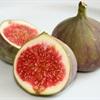 Những cách chữa bệnh bằng trái sung