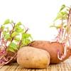 Cảnh giác 14 thực phẩm quen thuộc có nguy cơ tử vong