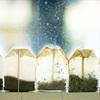 25 cách sử dụng bất ngờ từ trà túi lọc đã qua sử dụng P2