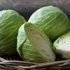 Ngăn ngừa ung thư và bệnh tim với bắp cải trắng