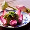 Những món Việt từ hoa vừa đẹp vừa ngon khiến người ăn phải xuýt xoa
