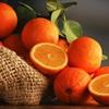 Công dụng trị bệnh tim và gan, tăng cường sức đề kháng tuyệt vời từ cam