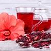 Bạn có biết Karkade - thức uống nổi tiếng Ai Cập được làm từ hoa dâm bụt không?