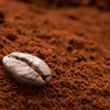 Mách bạn cách phân biệt cà phê thật và giả để đảm bảo an toàn khi sử dụng