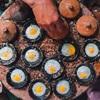 10 món ăn đặc sản Đà Lạt nhất định phải thử một lần