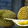 Trái Cây Mùa Hè: 9 Loại Trái Cây Phải Thưởng Thức Trong Mùa Hè