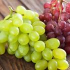 9 loại trái cây hàng đầu giúp bạn trẻ lâu