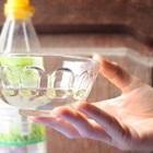 Tìm hiểu cách giảm cân an toàn và hiệu quả từ việc uống giấm