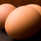 Công dụng bất ngờ của quả trứng