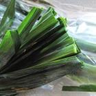 5 công dụng hữu ích từ lá dứa không nên bỏ qua