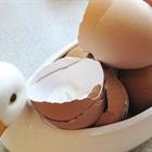 Mẹo làm sạch chai nhựa, thủy tinh đơn giản từ vỏ trứng bỏ đi