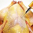 Cách nhận biết thịt gà, vịt và heo bị bơm nước và thuốc an thần