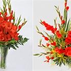 Mẹ Hà thành chia sẻ cách cắm hoa lay ơn đẹp mắt may mắn đón Tết