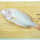 Mẹo làm sạch ruột cá mà không cần phải mổ bụng