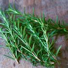 """Hương thảo, loại gia vị """"thần kỳ"""" đến từ Châu Âu đặc biệt tốt cho sức khỏe"""