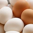 Trứng gà màu nâu hay màu trắng thì bổ hơn?