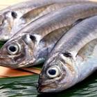 Giữ cá tươi lâu với 5 mẹo đơn giản đến bất ngờ