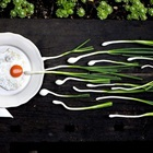 """10 loại thực phẩm làm tăng số lượng """"tinh binh"""" cho nam giới"""