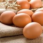 Cách chọn trứng gà không bị tẩy trắng đơn giản, dễ dàng ngoài chợ để bảo vệ sức khỏe cho gia đình