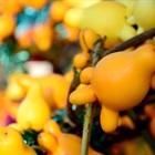 Những loại trái cây lạ và ý nghĩa chưng Tết có thể bày trên mâm ngũ quả cho Tết thêm mới la
