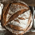 Kỹ Thuật Tự Nuôi Men Cho Bánh Mì Sourdough Tại Nhà