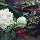 6 loại rau chứa nhiều canxi và tốt cho sức khoẻ hơn tôm, thịt không phải ai cũng biết