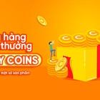 Cooky Coins là gì? Làm thế nào để nhận Cooky Coins?