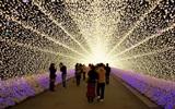 Lễ hội ánh sáng Nhật Bản hoành tráng nhất năm