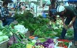 Cách chọn lựa rau củ tươi ngon khi đi chợ