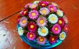 Cách làm những bông hoa xinh xắn bằng ống hút
