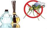 """""""Xua đuổi"""" muỗi bằng những biện pháp tự nhiên"""