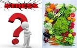 """8 loại thực phẩm giúp """"xả stress"""""""