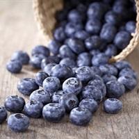 12 Thực phẩm theo tháng tốt cho sức khỏe bạn nên thêm vào bữa ăn của cả gia đình
