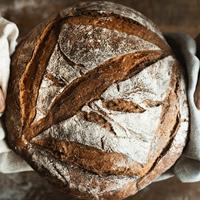 Kỹ thuật tự nuôi men tại nhà và bí mật về Sourdough Bread dành cho người nghiện bánh mì