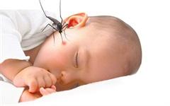 8 thực phẩm xoa dịu vết muỗi đốt cho bé