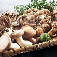 Cách sơ chế nấm tươi và nấm khô sạch mà không bị mất chất dinh dưỡng