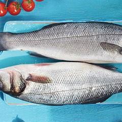 Cách chọn cá không ươn dành cho chị em nội trợ khi đi mua cá