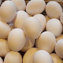 Cách nhận biết trứng cũ mới chỉ bằng những cách cực đơn giản và hiệu quả để đảm bảo sức khỏe